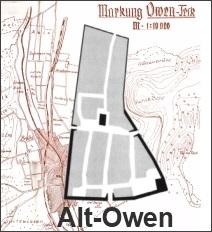 Alt-Owen Logo